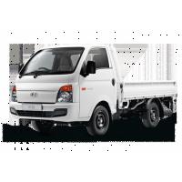 Van/Light Duty Truck